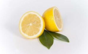 """Das Allroundgenie """"Zitrone""""! Was ihr mit der gelben Frucht alles machen könnt..."""