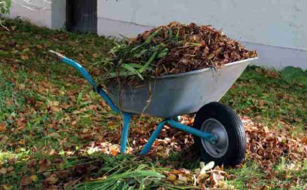 So macht ihr euren Garten winterfest!