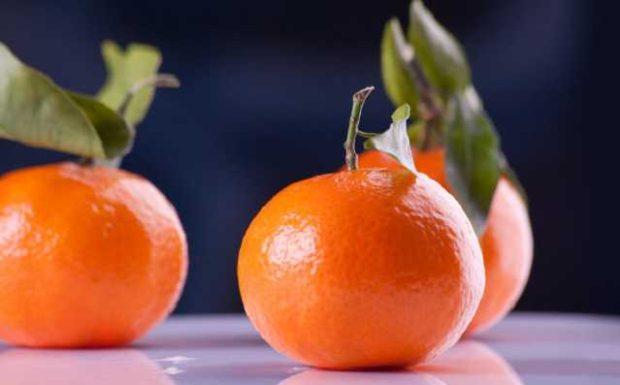 Mandarine, Clementine, Satsuma… der Zitrusfrüchte-Check!
