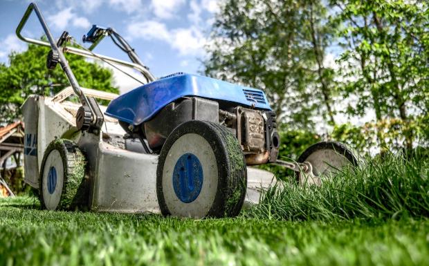 So bringt ihr euren Rasen in Hochform!