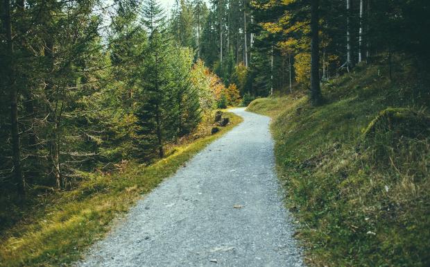 Die TOP 10 der schönsten Familienwanderwege in Vorarlberg!