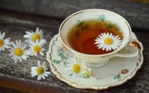 Wisst ihr schon alles über Tee? Die größten Tee-Mythen im Check!