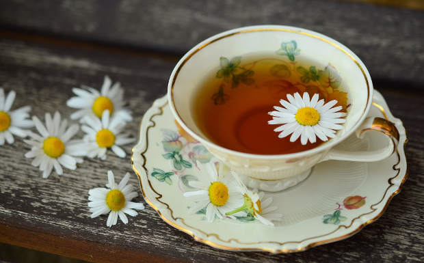 Wisst ihr schon alles über Tee?