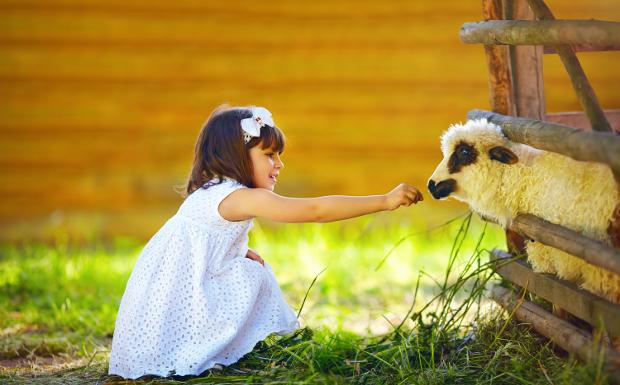 Lust auf ein Wochenende auf dem Bauernhof?