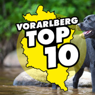 Die Vorarlberg TOP 10: beste Hunde-Badeplätze Hier abstimmen: Wir suchen die 10 besten Hunde-Badeplätze in Vorarlberg!
