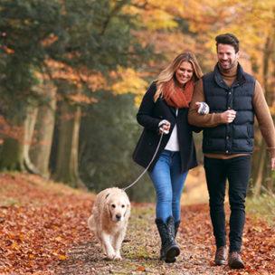 Die TOP 10 der schönsten Herbstspaziergänge in Vorarlberg!