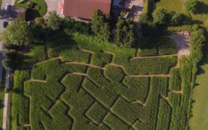 Das Lindauer Maislabyrinth noch bis Oktober ein tolles Erlebnis für die ganze Familie!