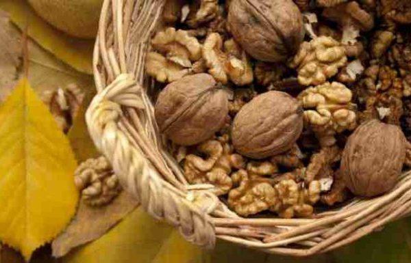 Diese Lebensmittel helfen gegen Stress!