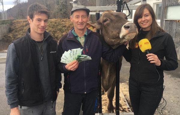 Kuuuhl: ANTENNE VORARLBERG zahlt Kuh von Alexander Bechter aus Hittisau!
