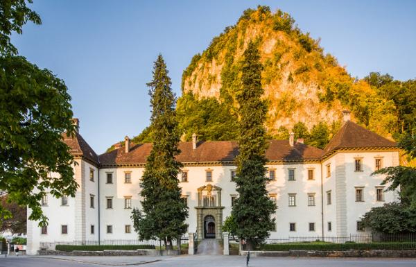 Die TOP 10 der besten Martinigans-Restaurants in Vorarlberg!